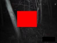 【アダルト動画】( 閲 覧 注 意 ) こ の 動 画 を 見 て 勃 起 し た ら 犯 罪 者 確 定 。(無料)