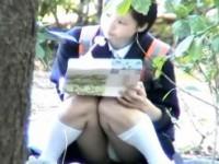 【アダルト動画】(パンチラ隠撮ムービー)幼い顔した今時女子校生が公園で座りながら昼食中…白の綿パンツが丸出しの座りチラwwwwww(無料)