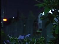 【アダルト動画】(強姦)最近ダンナと生Hレスで欲求不満な牝の妖艶な香りがする五十代Dカップ美巨乳美人妻母をムスコが近親ソウカン強姦(無料)