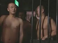 【エロ動画】 【アダルト動画】《奴隷教育》NTR属性を拗らせた既婚男性の命令で磔にされる中年女性に連続ぶっかけ教育