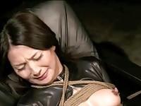 【H動画】 【アダルト動画】《奴隷訓育》小町娘 な顔が鼻フックで崩れる美オバサンさんに興奮訓育