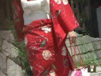 【アダルト動画】 【アダルト動画】祭りの季節目前☆浴衣姿でしゃがみ込む美ロリータや御姉さんのパンモロを対面撮り覗き見しちゃいました!!
