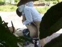 【無料エロ動画】 【アダルト動画】【青姦隠撮動画】女子校生カップルが公園のベンチで性行為…友人が草むらに隠れて隠し撮りww