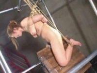 【アダルト動画】 【アダルト動画】横暴ぎゃるが調教を超えた拷問で木馬責めされる拝読注意なエロビデオ