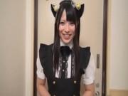 【エロ動画】 【アダルト動画】猫耳着装した御姉さんがチングリ返しで肛門なめまでしてのSEX!!